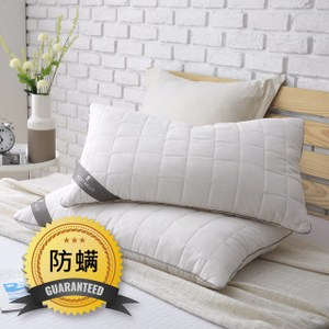 MONTAGUT-防蹣抗菌枕(2入)