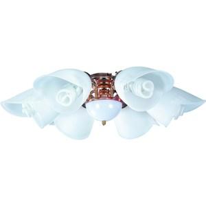 【大巨光】吊扇燈具(WT-438)