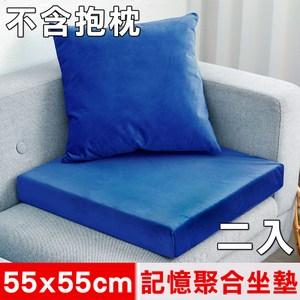 【凱蕾絲帝】記憶聚合加厚絨布坐墊/實木椅墊55x55cm-深藍(二入)